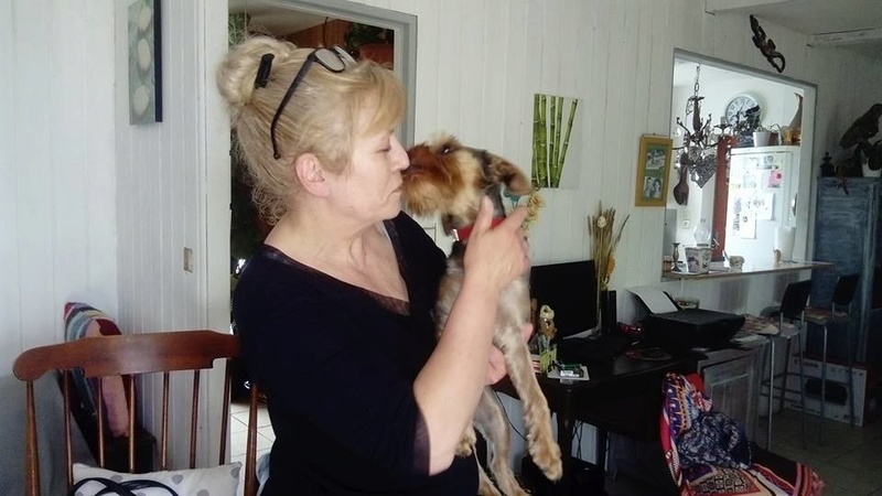TEDDY petite canaille de 7/10 mois Adopté  Teddy_11