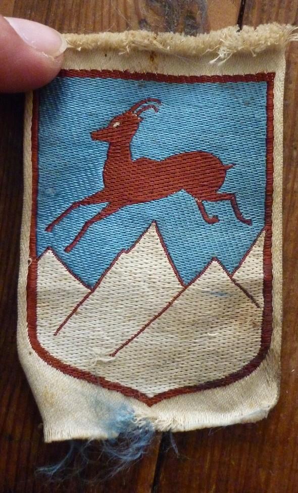 insigne tissu CJF ou scout ou? P1730211
