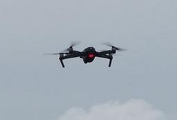 Nos 2 patrouilleurs seront-ils équipés d'un drone volant ? - Page 3 Skel_d12