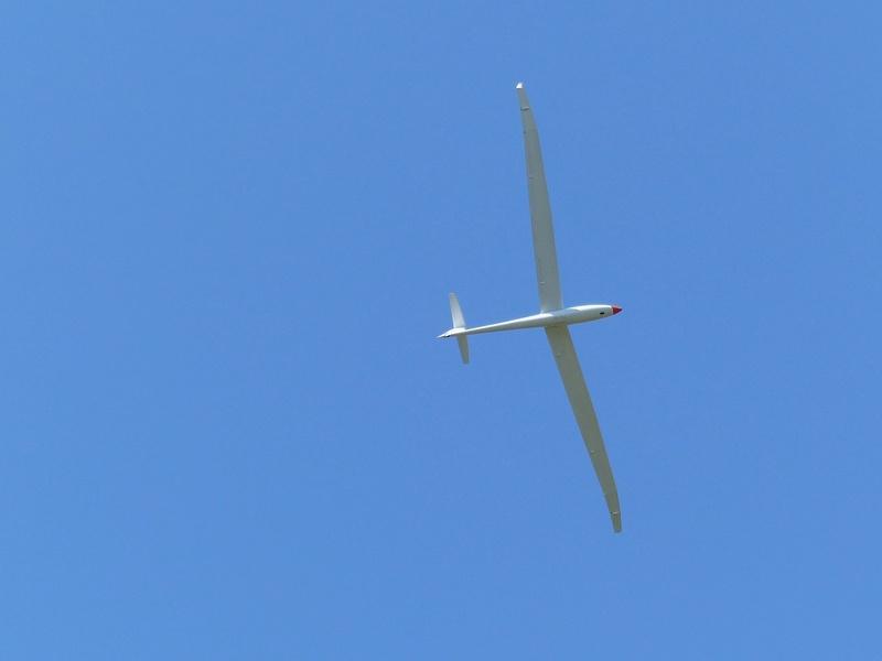Féria des grands planeurs Eauze. P1160225