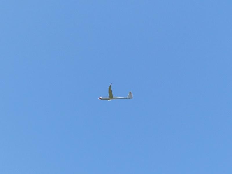 Féria des grands planeurs Eauze. P1160227