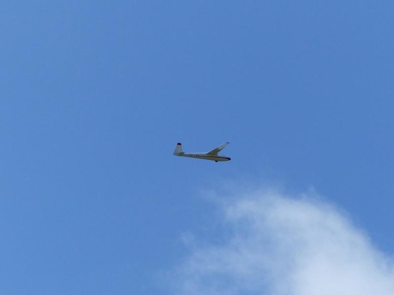 Féria des grands planeurs Eauze. P1160230