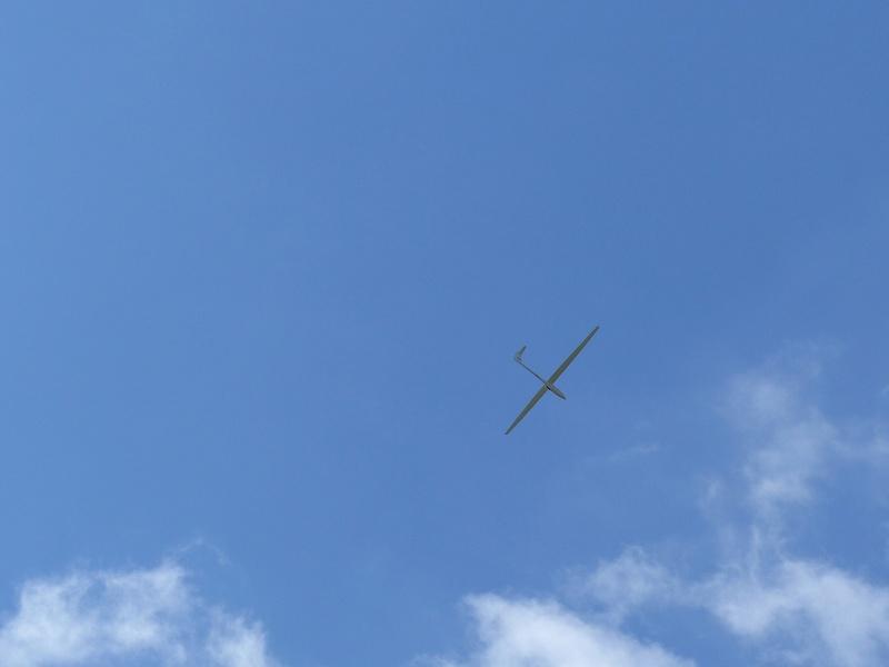 Féria des grands planeurs Eauze. P1160232