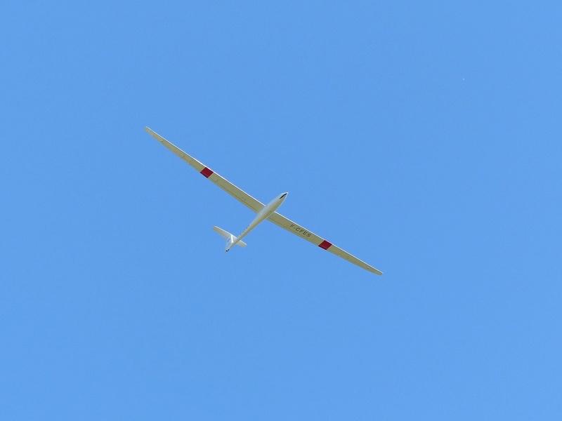 Féria des grands planeurs Eauze. P1160416