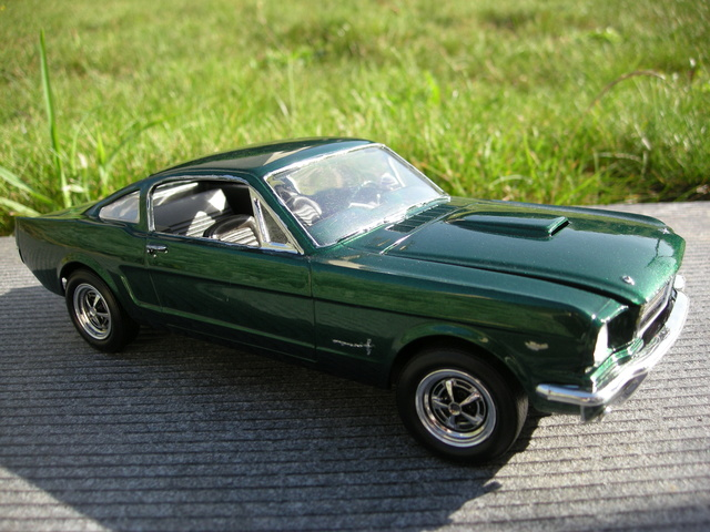 Mustang by greaserkid Dscn6410