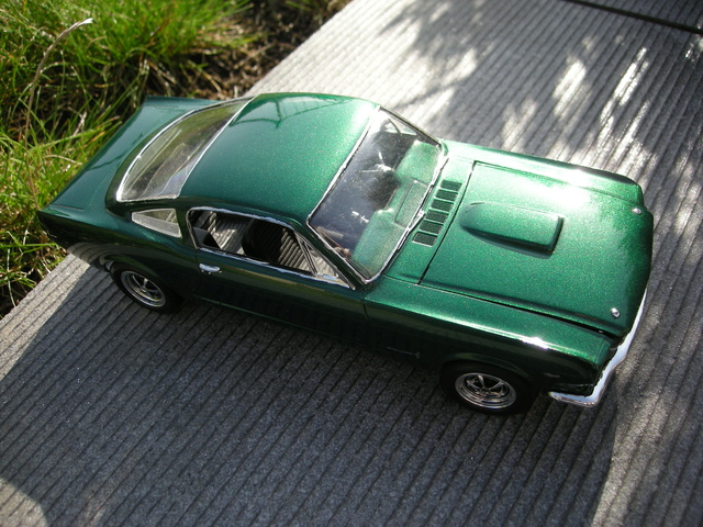 Mustang by greaserkid Dscn6415
