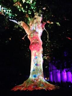 Bayeux arbre de la liberté, année 2017 Bayeux18