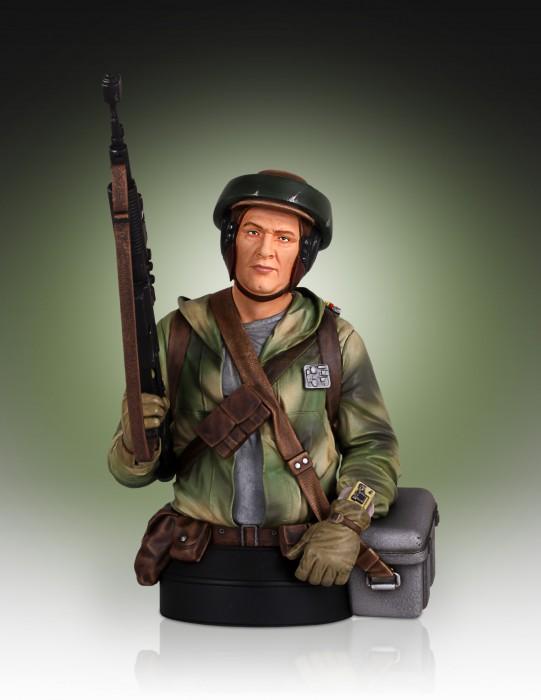 Gentle Giant - Star Wars Endor Trooper Mini Bust 01140