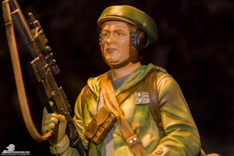 Gentle Giant - Star Wars Endor Trooper Mini Bust Ggendo10