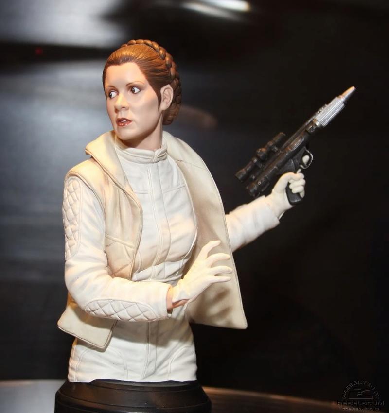 Gentle Giant - Hoth Leia Mini Bust Sneak Peek Hothle10