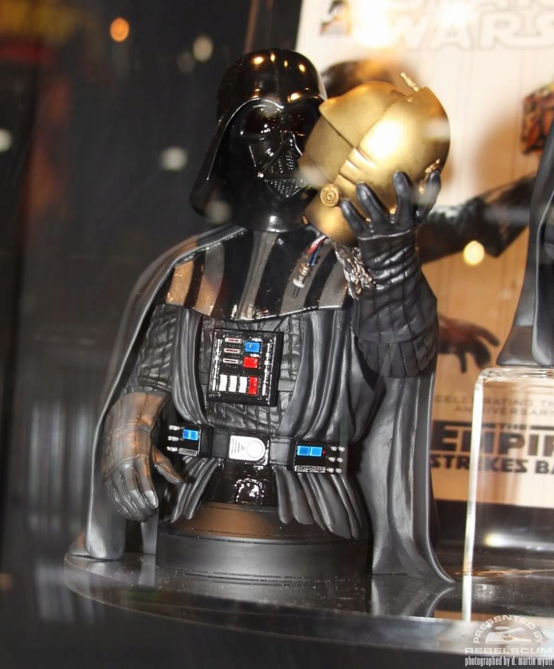 Gentle Giant - Darth Vader Holiday - Bust  Img_9621