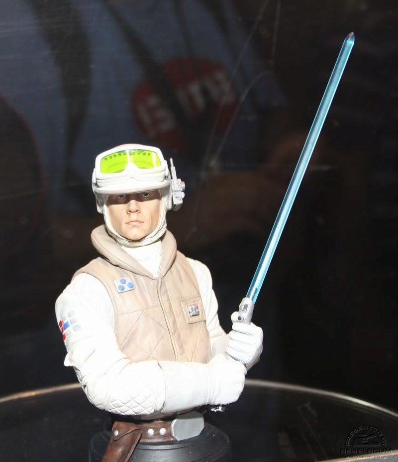Gentle Giant - Luke Skywalker Hoth Mini Bust Lukeho13