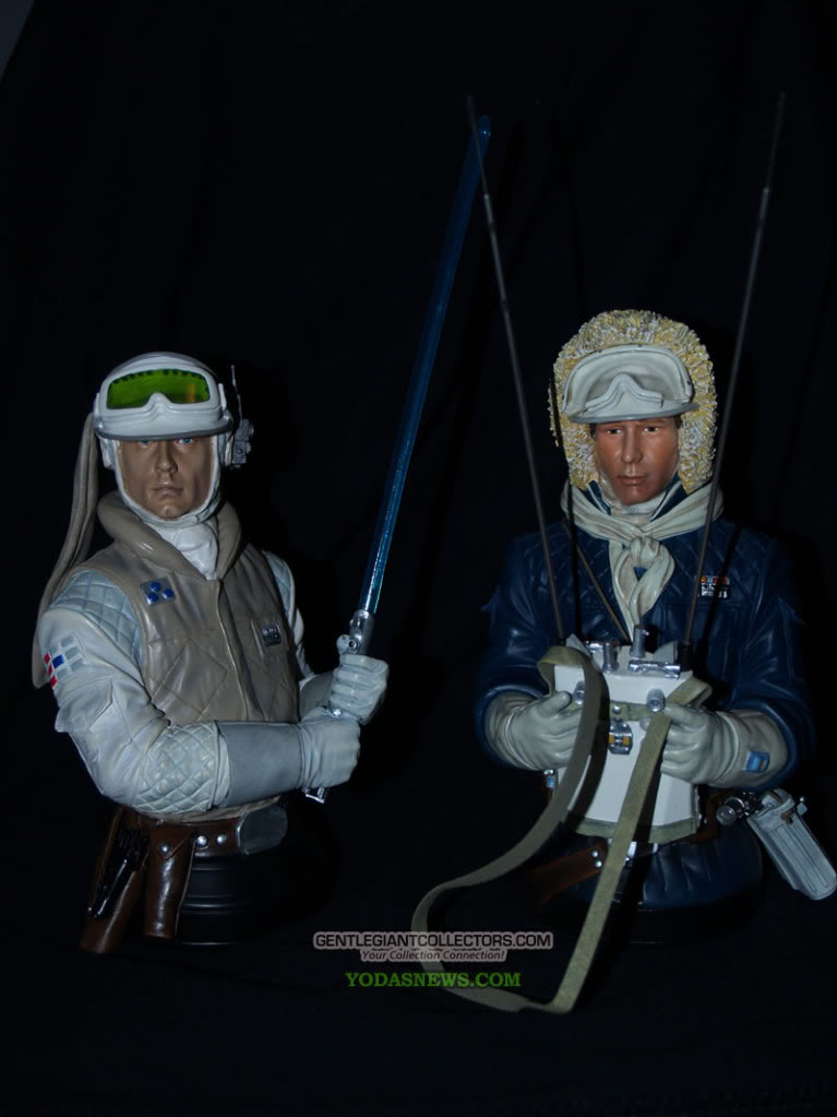 Gentle Giant -Han solo, Luke Skywalker & Leia Hoth mini-bust P7051910