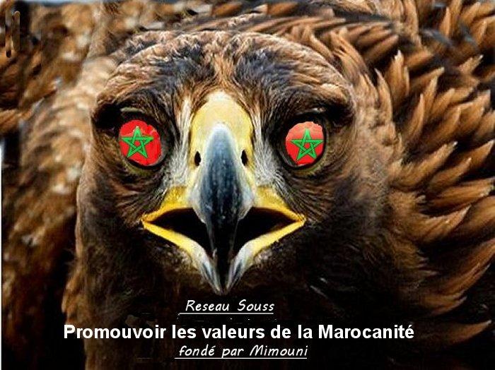 Le manifeste Mimouni Maroc logo  Aiglon11