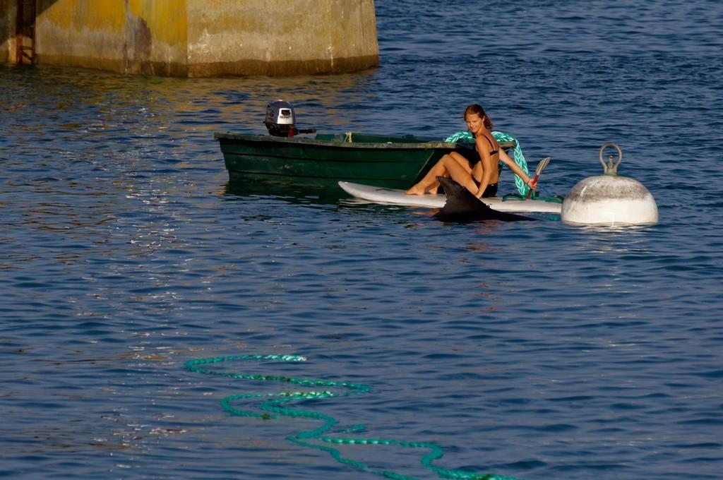 Randy le dauphin de Port Maria Quiberon ! Dsc_0079