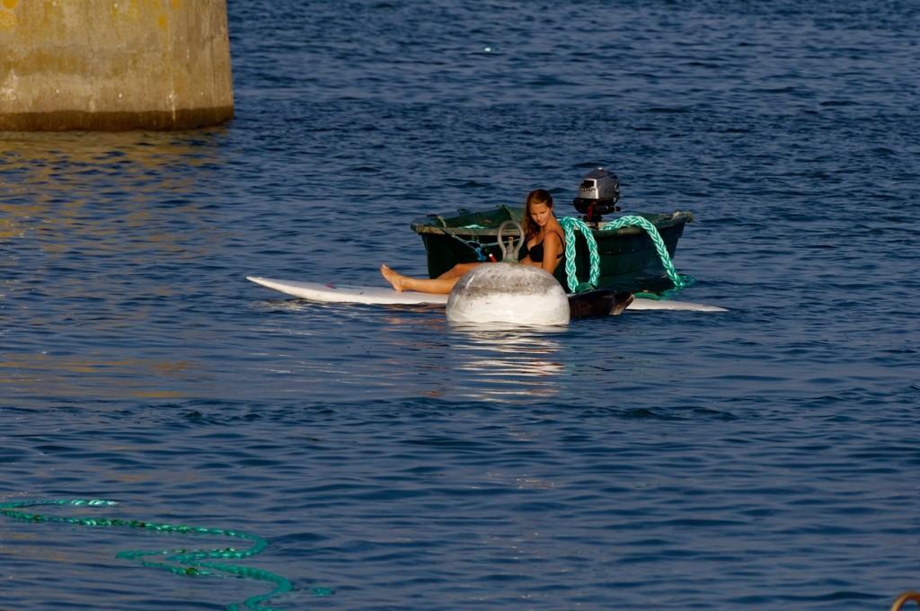 Randy le dauphin de Port Maria Quiberon ! Dsc_0080