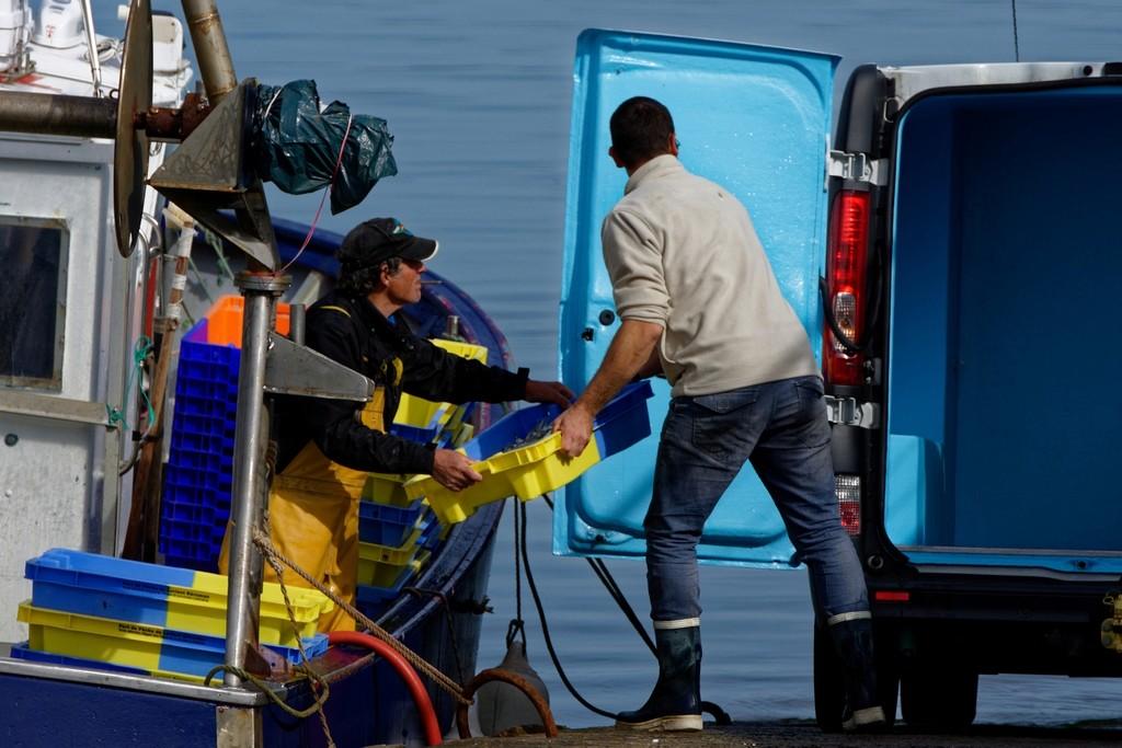 retour de pêche débarquement des caisses d'anchois ! Dsc_0414