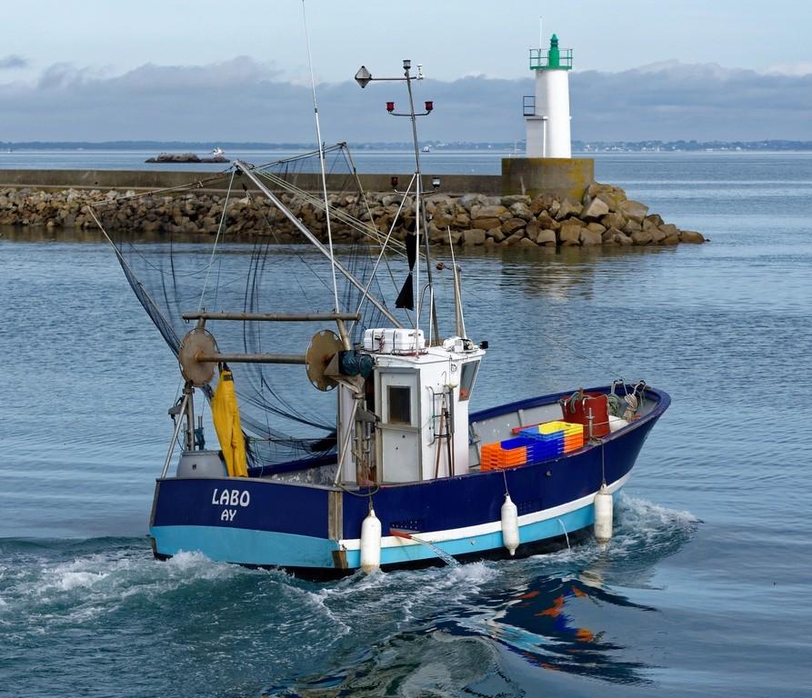 retour de pêche débarquement des caisses d'anchois ! Dsc_0417