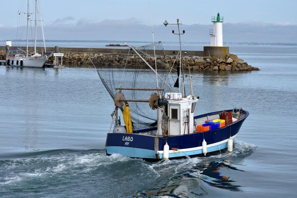 retour de pêche débarquement des caisses d'anchois ! Dsc_0422