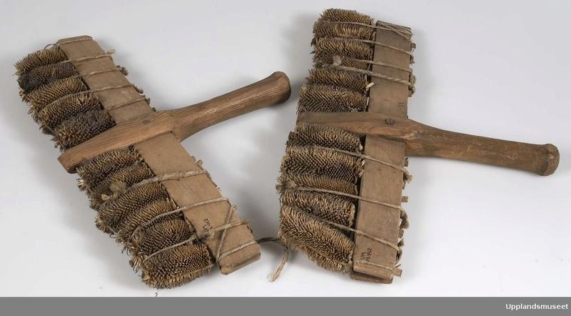 La cardère à lainer Cardyr11
