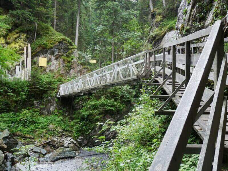 Vallée de Chamonix - Les gorges de la Diozaz (74) Gdd_1010