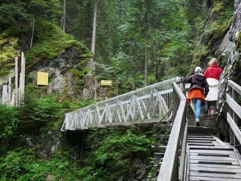 Vallée de Chamonix - Les gorges de la Diozaz (74) Gdd_1110