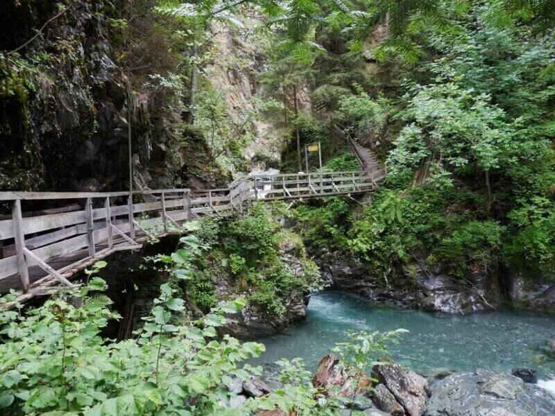 Vallée de Chamonix - Les gorges de la Diozaz (74) Gdd_1910
