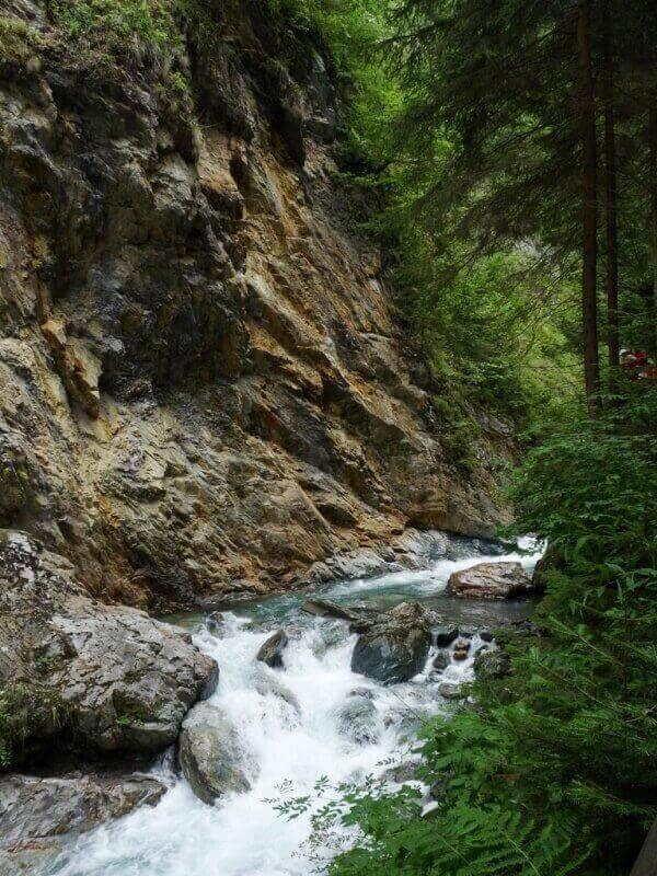 Vallée de Chamonix - Les gorges de la Diozaz (74) Gdd_2610