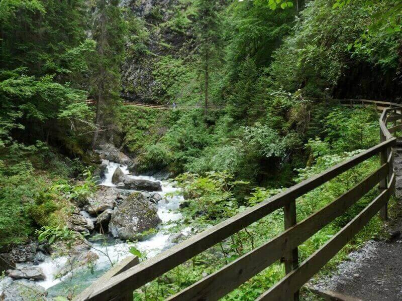 Vallée de Chamonix - Les gorges de la Diozaz (74) Gdd_2710