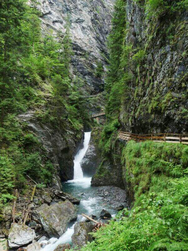 Vallée de Chamonix - Les gorges de la Diozaz (74) Gdd_2910