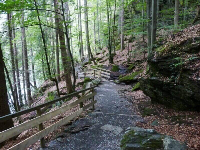 Vallée de Chamonix - Les gorges de la Diozaz (74) Gdd_310