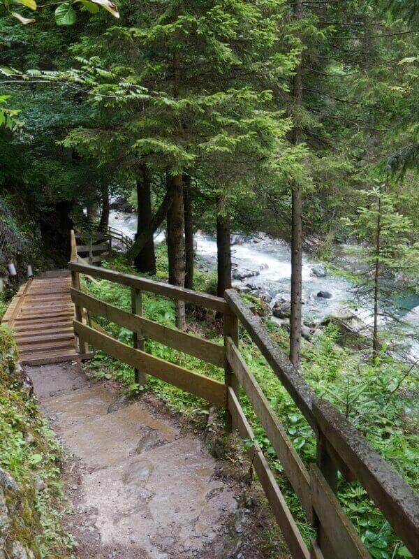 Vallée de Chamonix - Les gorges de la Diozaz (74) Gdd_610