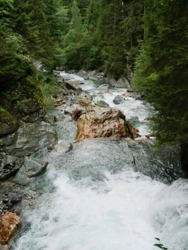 Vallée de Chamonix - Les gorges de la Diozaz (74) Gdd_810