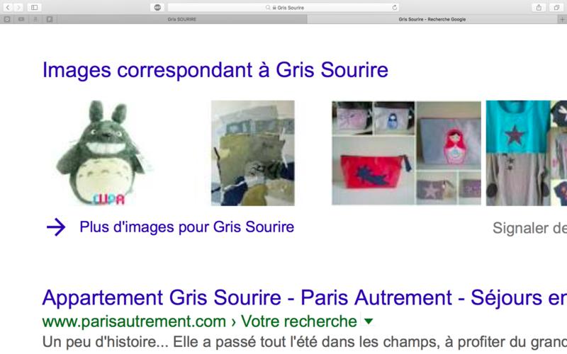 Recherche Google Captur14