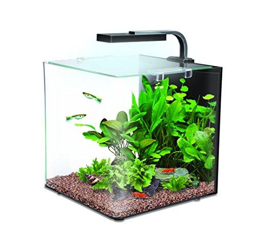 Débutante besoin d'aide pour projet aquarium 130 l 51sl8710