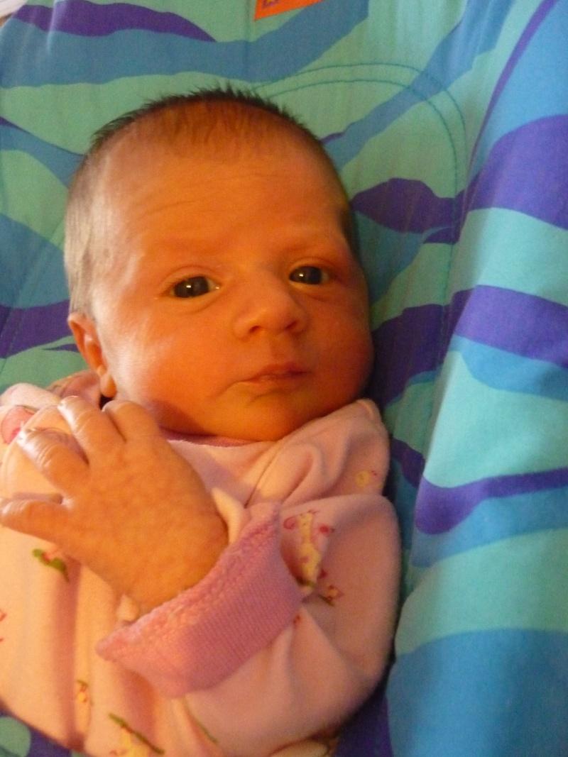 Les bédaines - semaine du 17 au 23 janvier 2010 - Page 2 P1010111