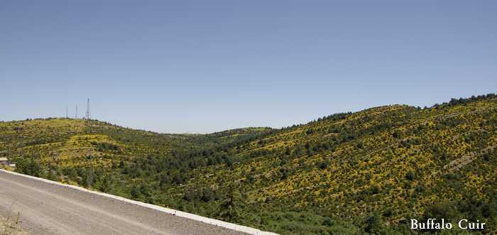 desert de Tabernas , que sont devenu les lieux de tournage Almeri38