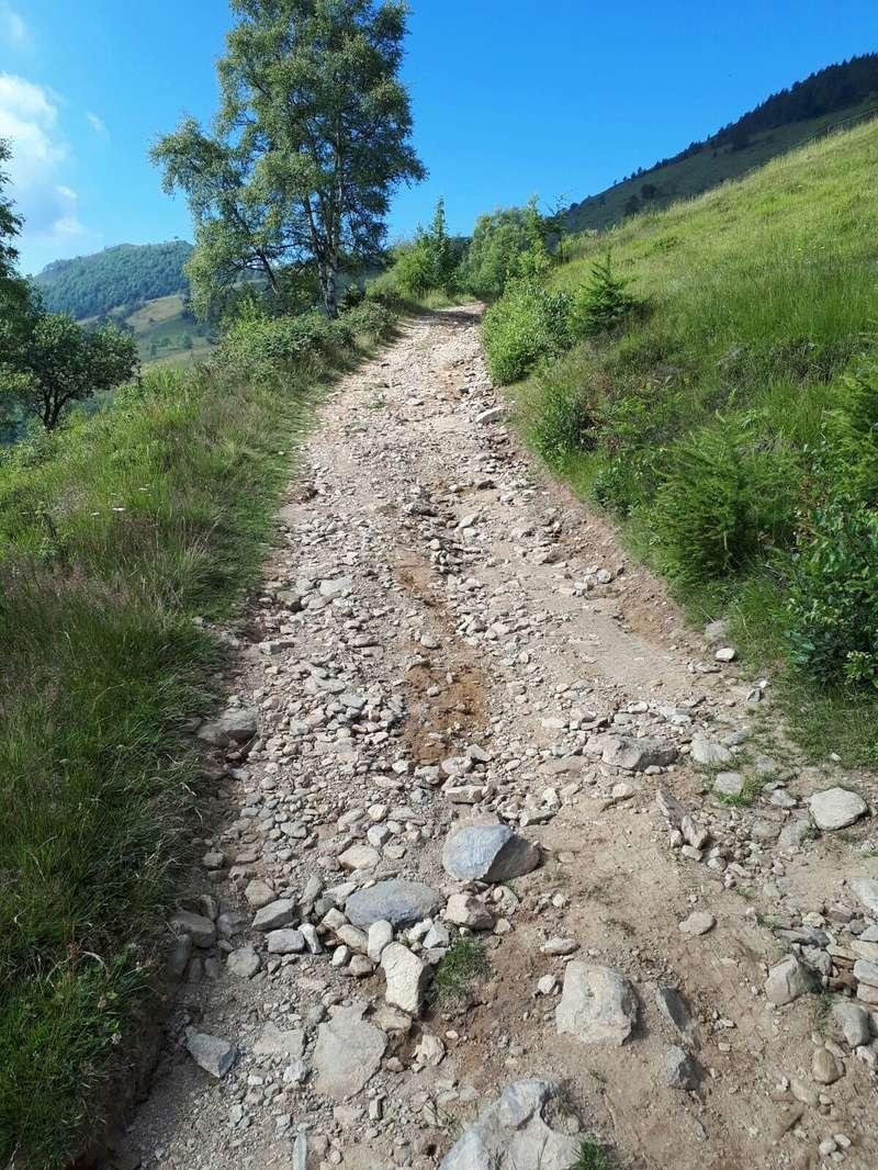 Cool Alpi Tour 2017 Img_6145