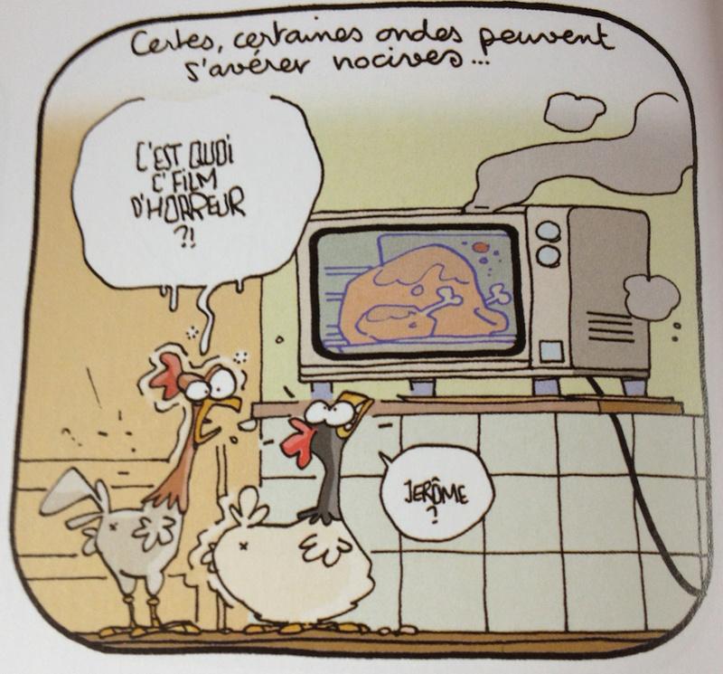 Les ondes et les poulets Poulet10