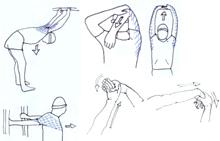 Gymnastique aux agrés (et accessoirement musculation/exercices poids du corps + souplesse) 02075910
