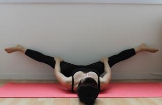 Gymnastique aux agrés (et accessoirement musculation/exercices poids du corps + souplesse) Grand-10