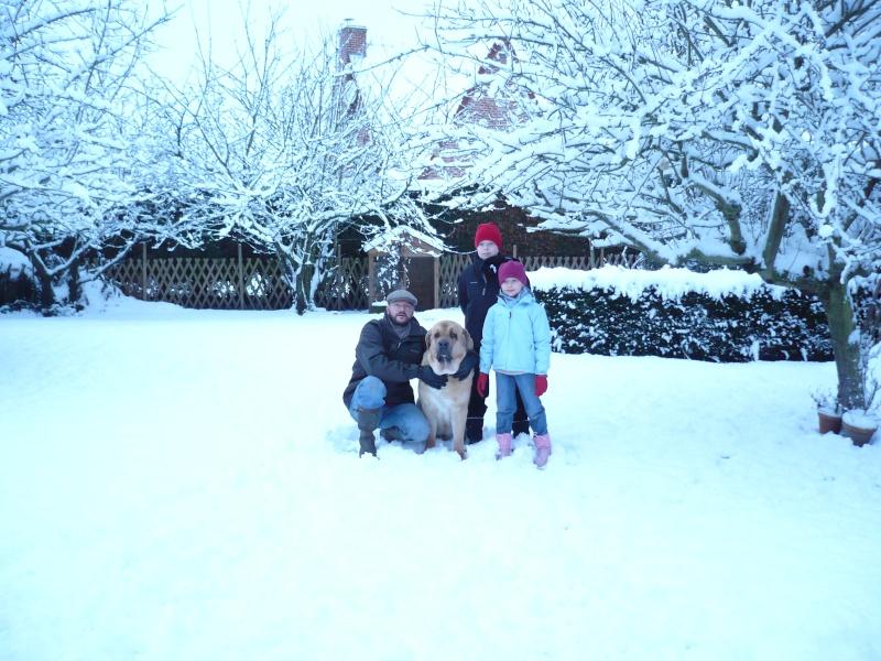 Joyeux Noël et bonne annee à tous ! P1050910