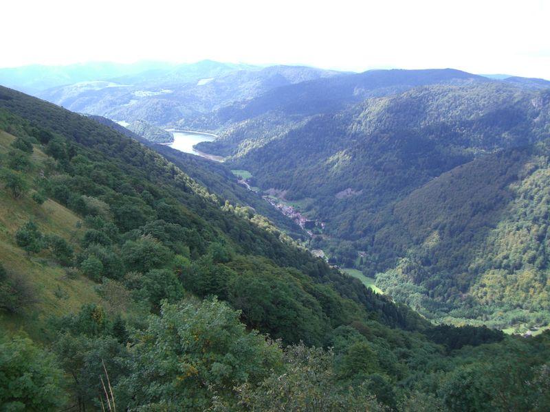 Gravillons descente du markstein Vosges - Page 2 Route_10