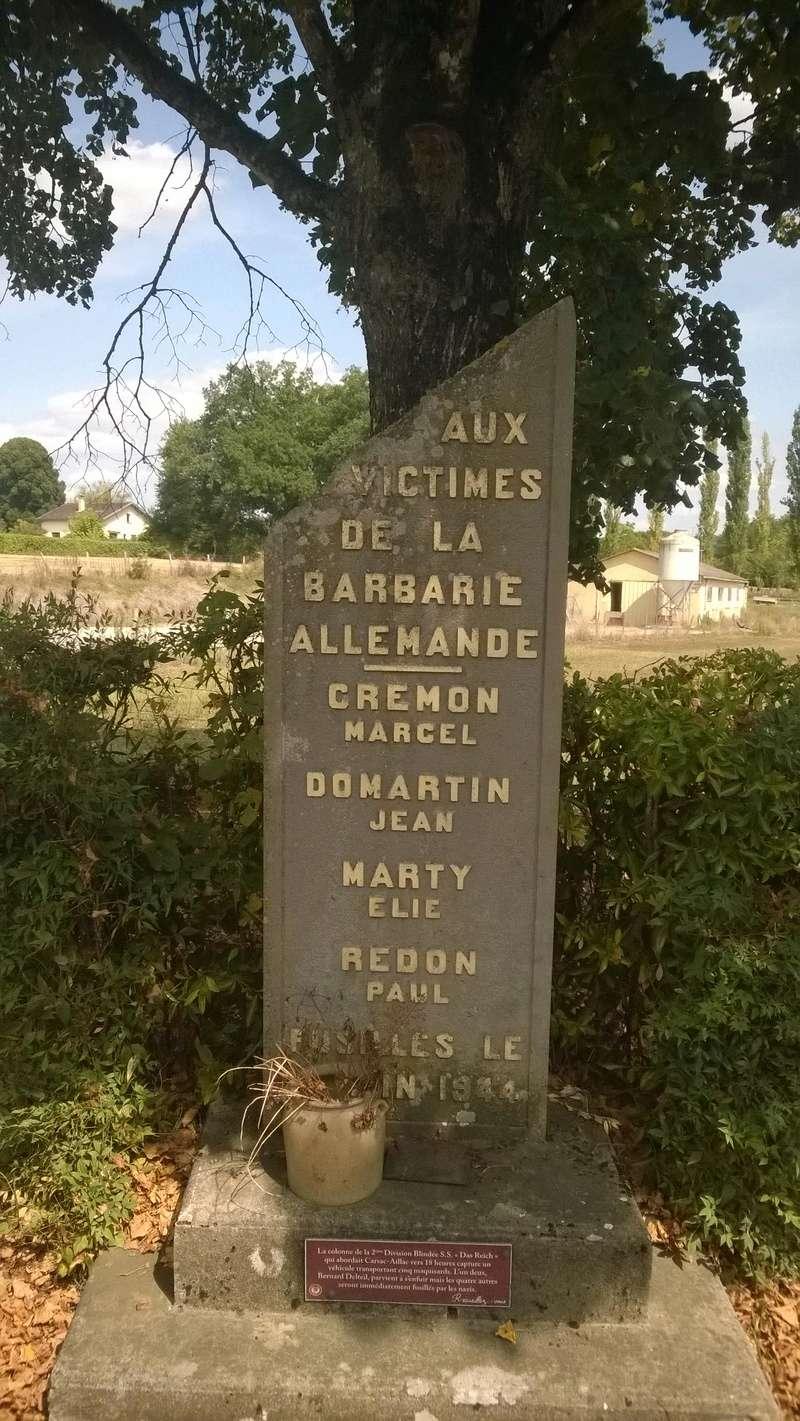 Sur les bords de la Dordogne (Périgord noir) Wp_20110