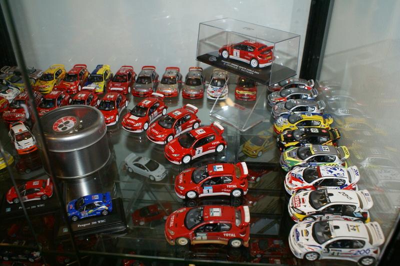 mes lionnes miniatures Mag1_011