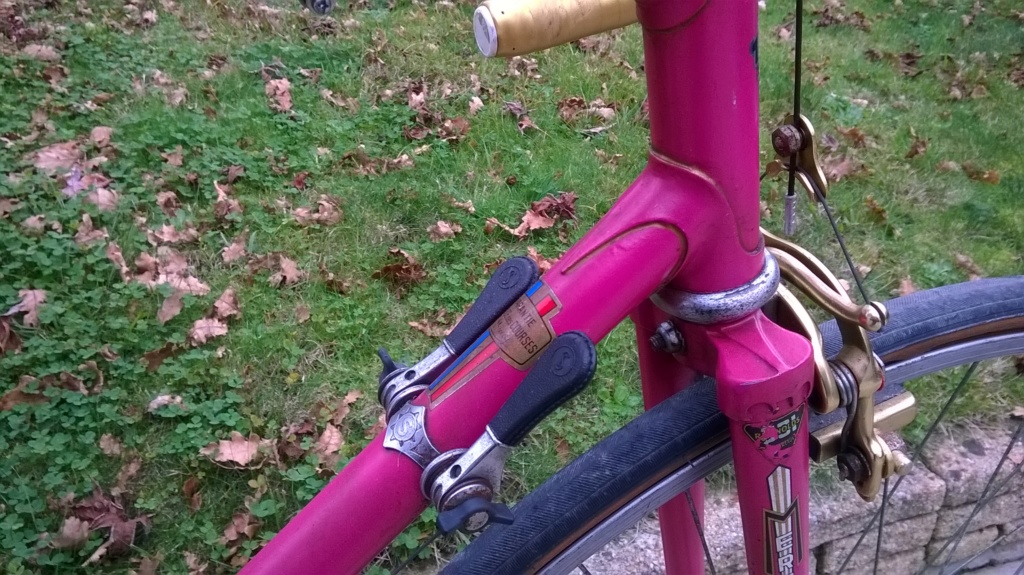 Mercier rose 1974 Wp_20141