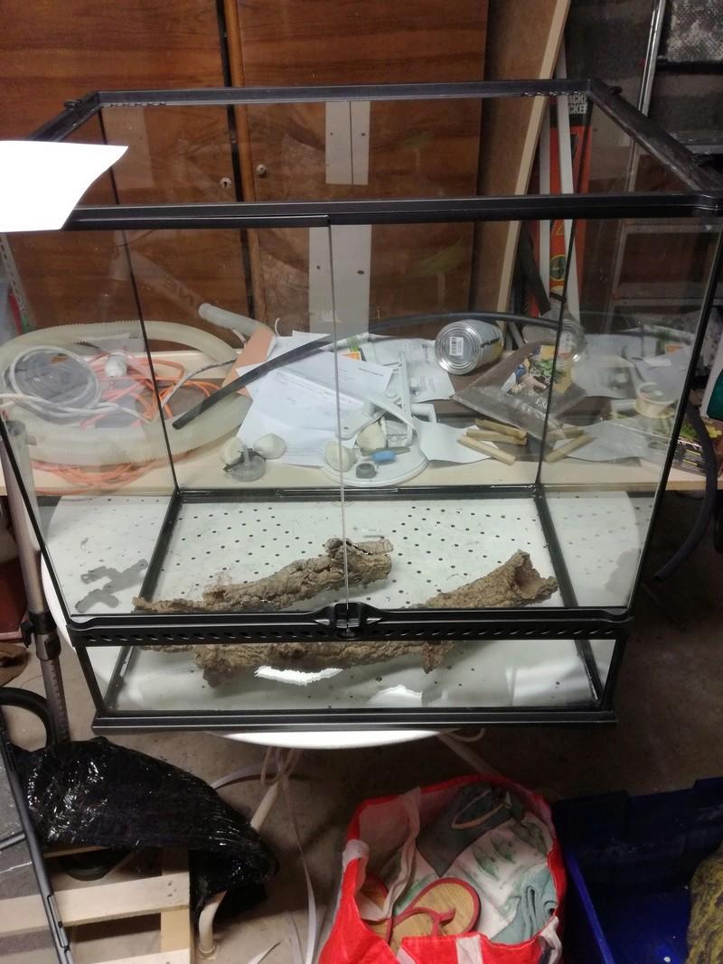 [Exo Terra] Mon second exoterra en paludarium 60X45x60 pour Bombina orientalis Img_2011