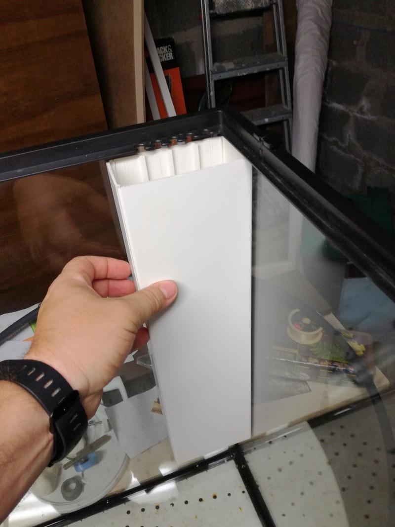 [Exo Terra] Mon second exoterra en paludarium 60X45x60 pour Bombina orientalis Img_2012