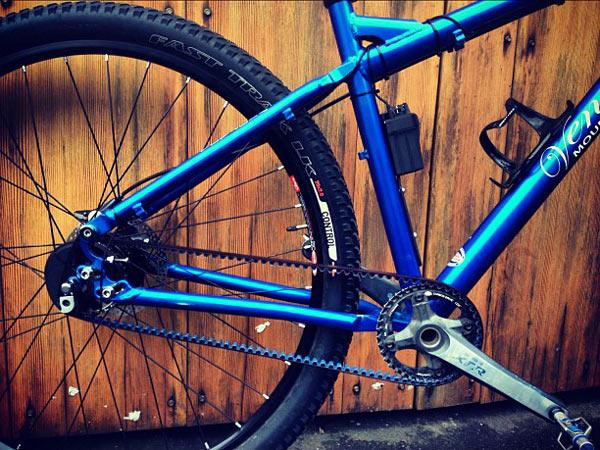 VENTANA Cyclep11