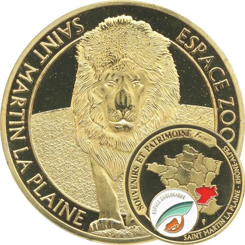 Saint-Martin-la-Plaine (42800) Martin11